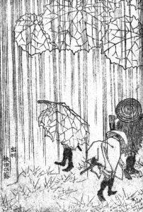 雨が続いていますね…