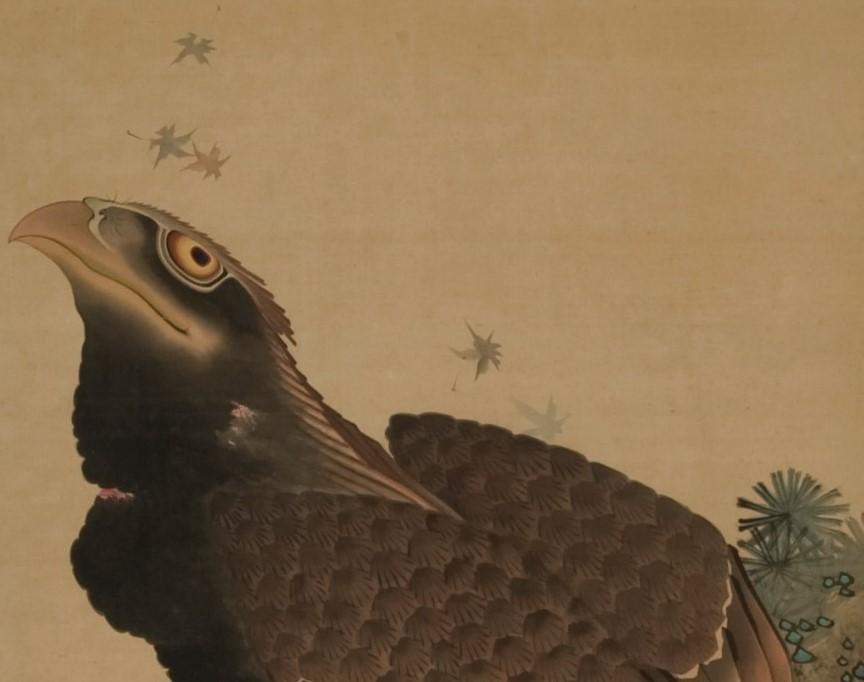 展示作品紹介「巌上の大鷲」